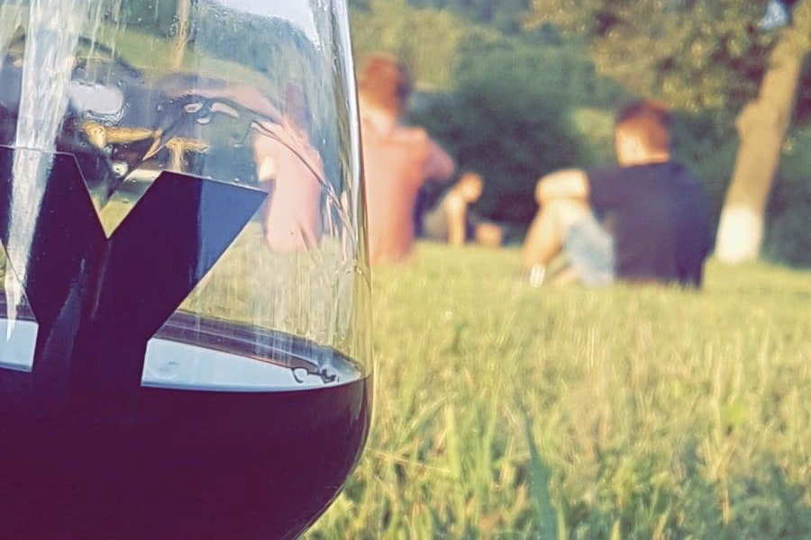 wine tasting the great yonder